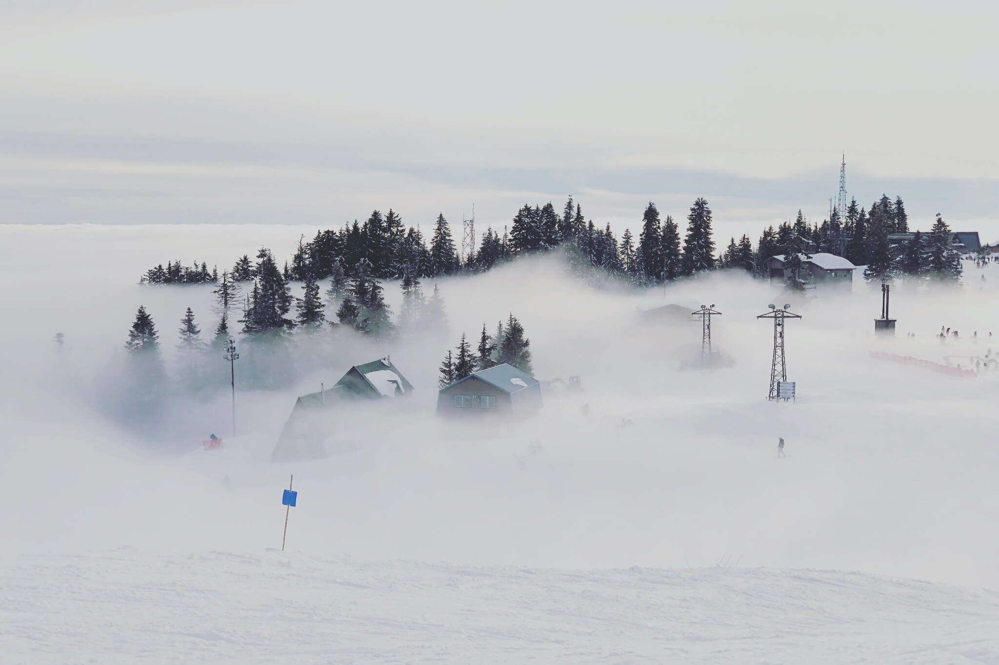 Grouse Mountain, January 26th, 2019